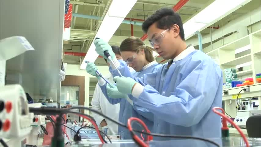 Molecular Genetic Technology Program Video in English